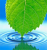 Criterios ambientales